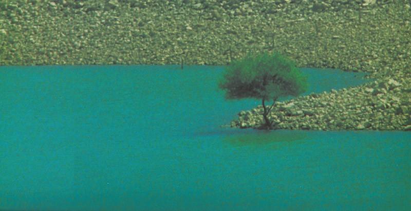 ibrahim demirel fotoğrafları ile ilgili görsel sonucu